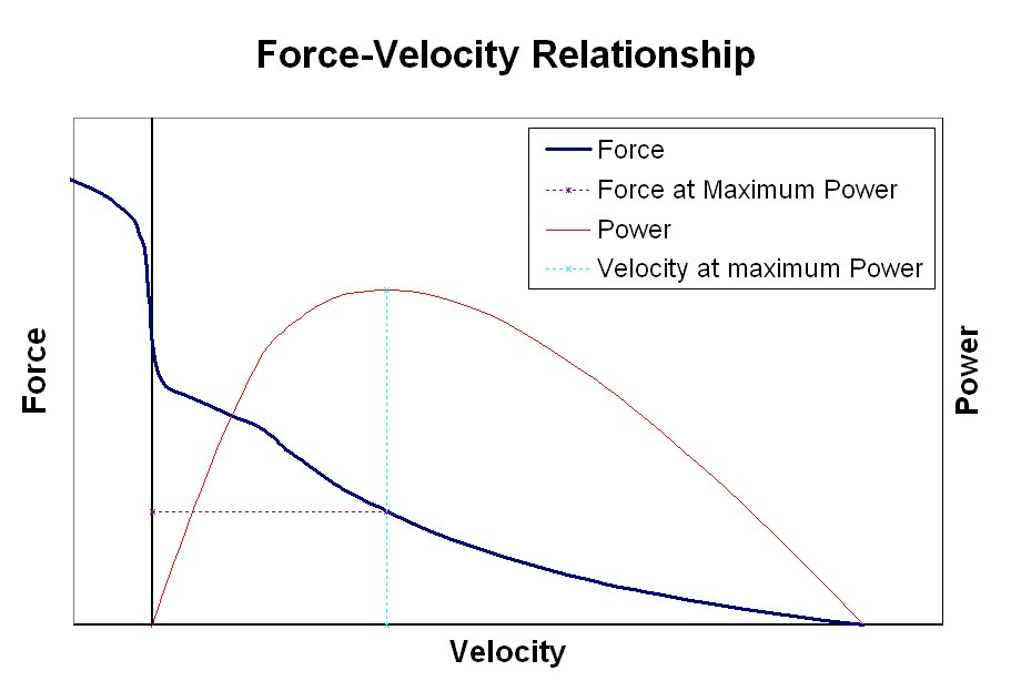 Force/velocity relationship